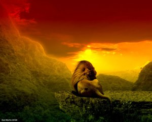 Lion on Mountain