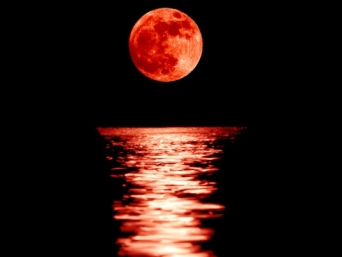 Blood-moon-lg